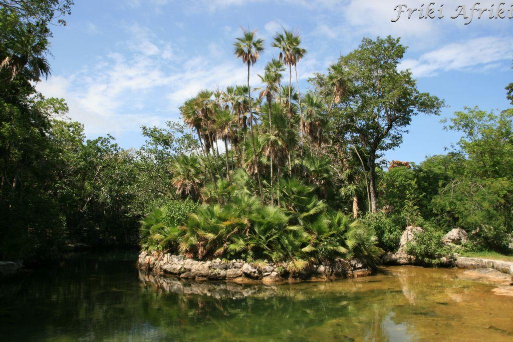 Cenote Yax-Kim, Meksyk