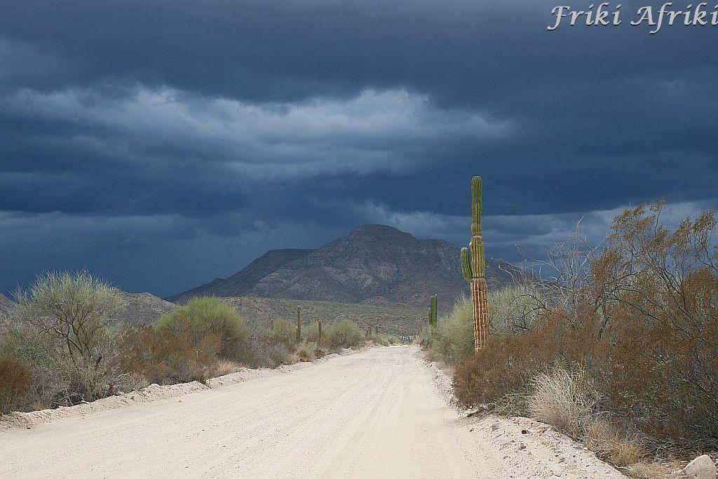 Przed burzą, Baja California Sur, Meksyk