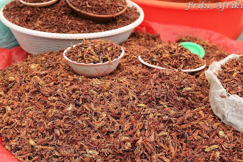 Chapulines, czyli świerszcze