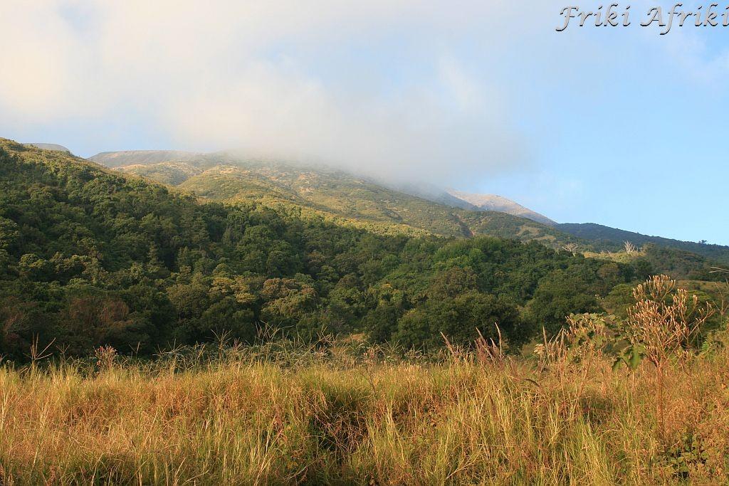 Okolice Cerro Verde, Salwador