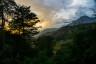 Góry i drzewa fotografować można bez ograniczeń.