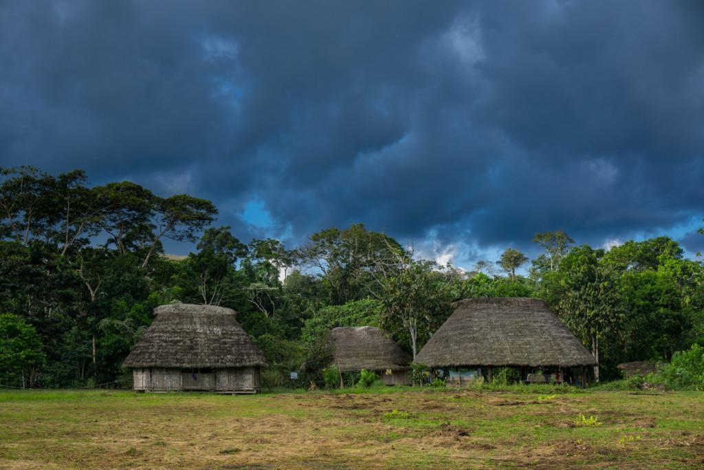 ekwador selwa widoki-14