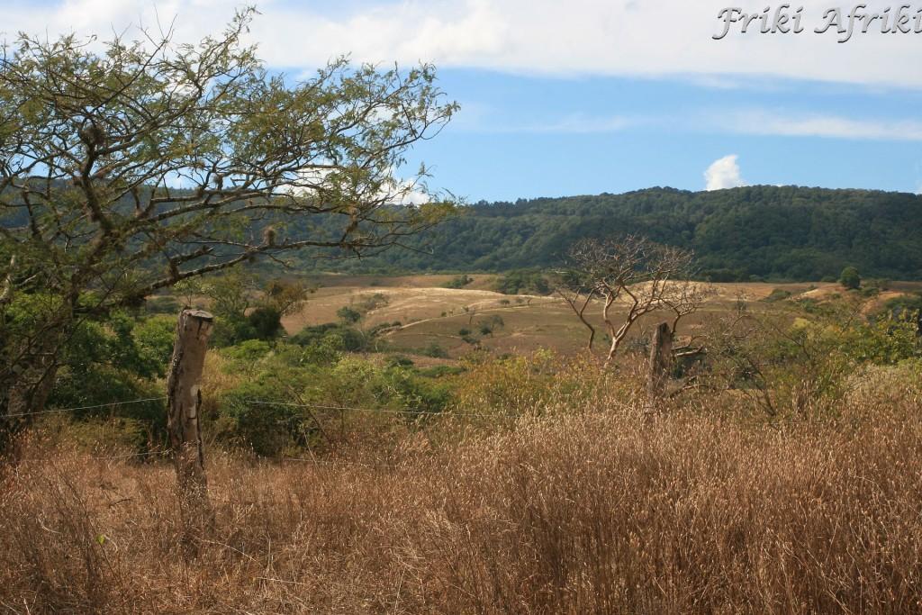 Koło granicy z Hondurasem