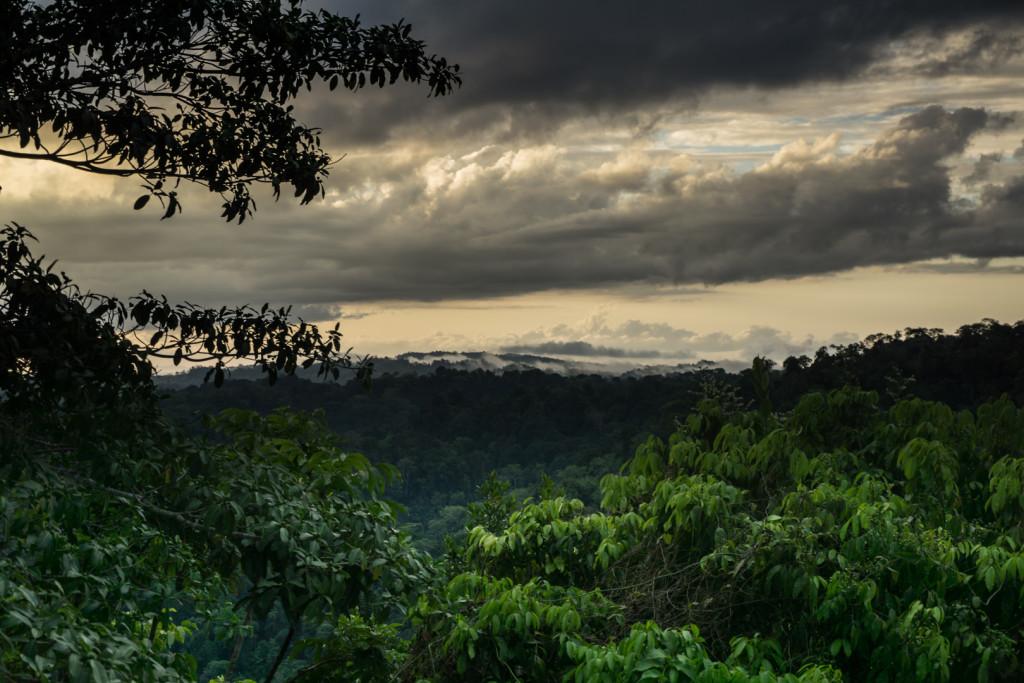 Costa Rica przyroda-32