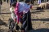 ekwador mercado de animales-23