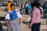 ekwador mercado de animales-25