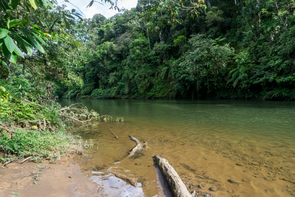 ekwador pastaza-1