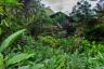 ekwador pastaza-5