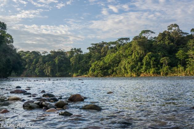 amazonia-20