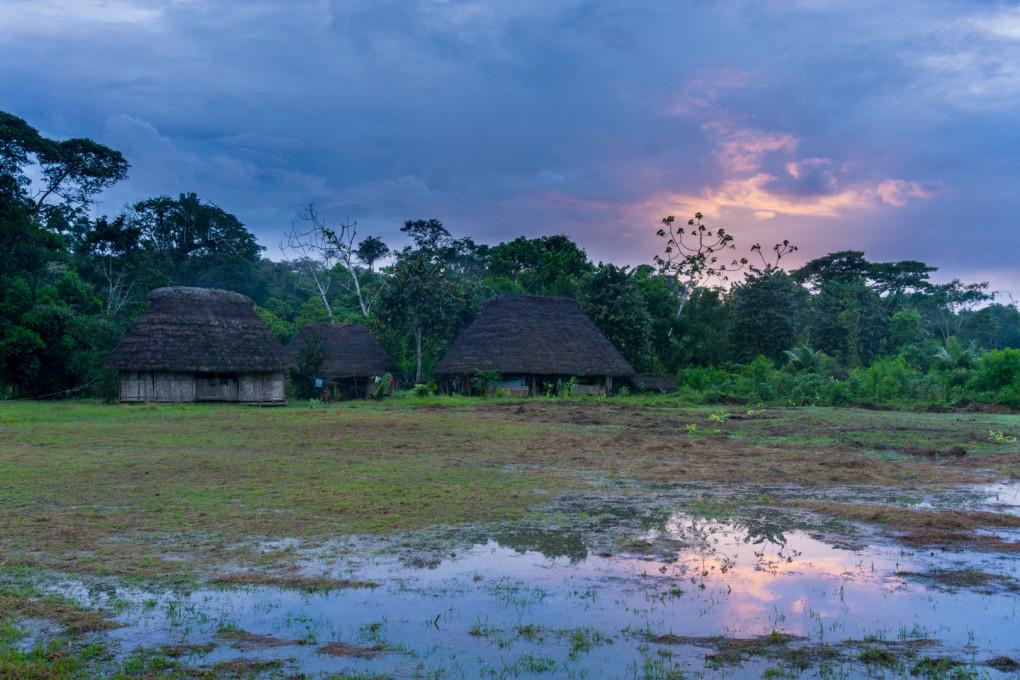 ekwador selwa widoki-10