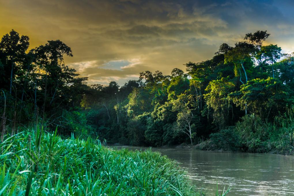 ekwador selwa widoki-18