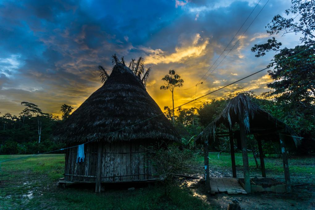 ekwador selwa widoki-19