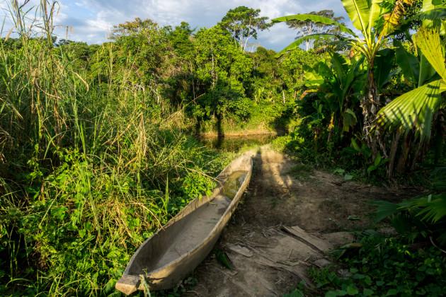 ekwador selwa widoki-32