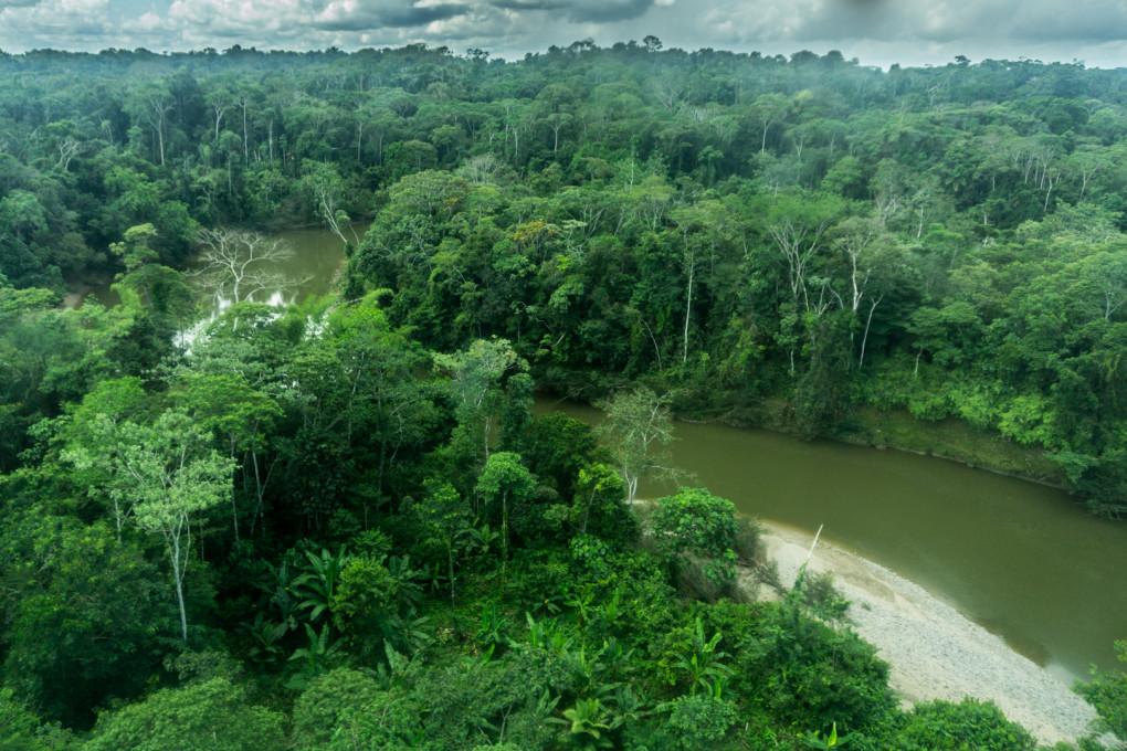 ekwador selwa widoki-40