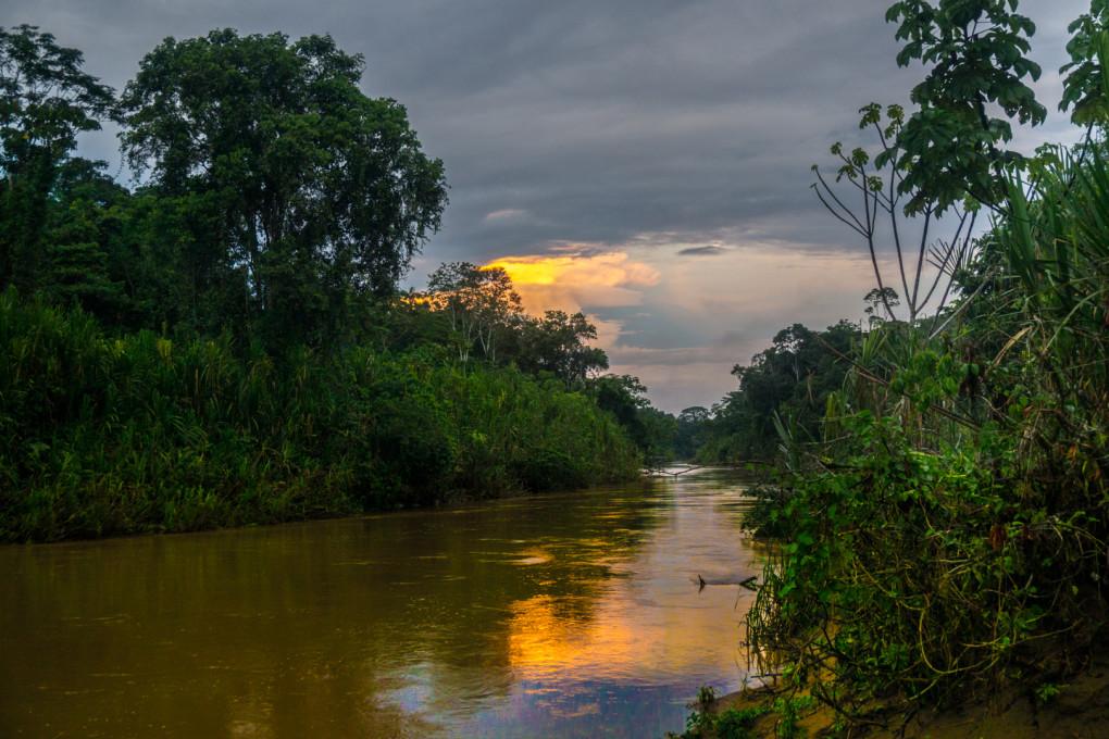 ekwador selwa widoki-7
