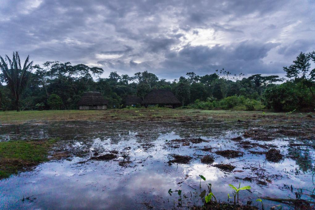 ekwador selwa widoki-9